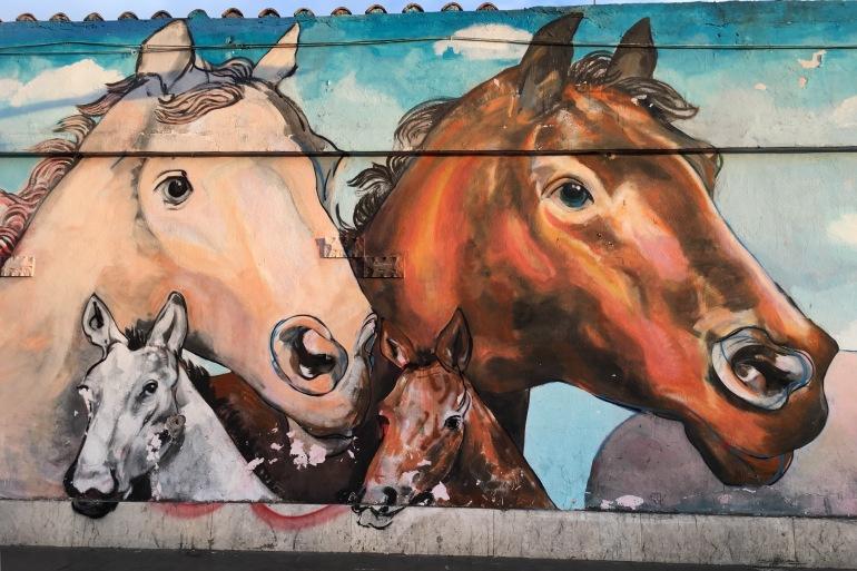 urban-horses