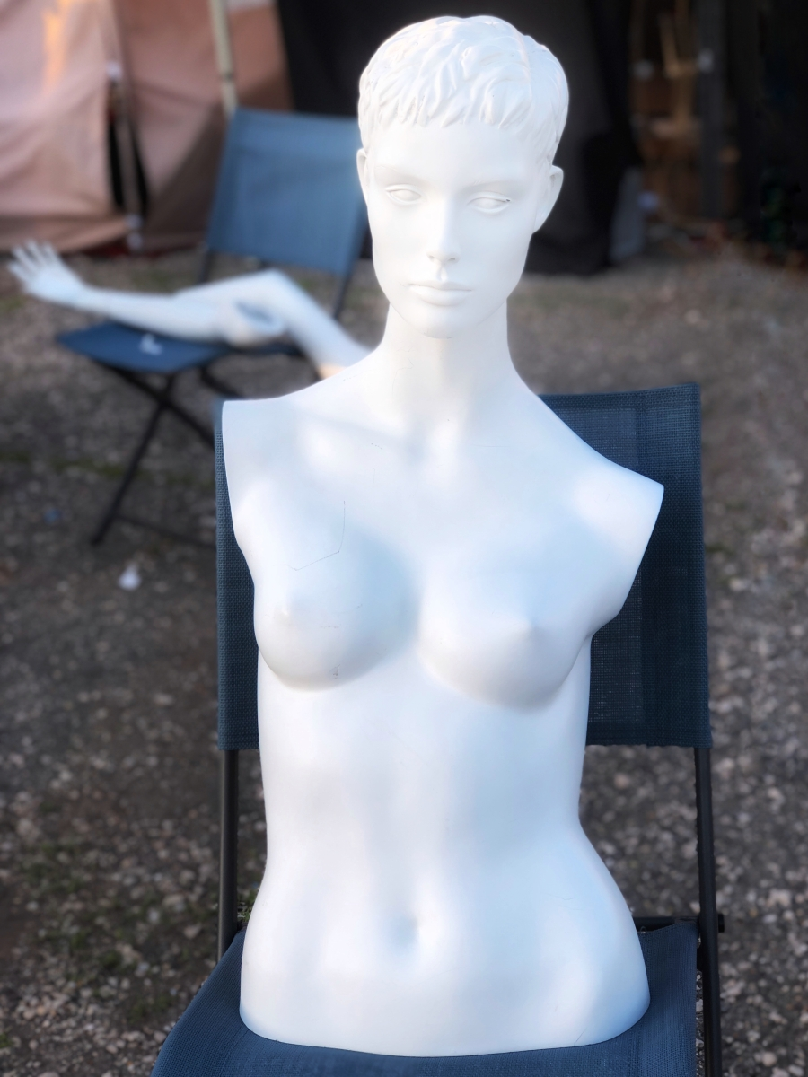 Venus 2018